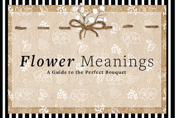 Flower Meanings: A Guide to the Perfect Bouquet